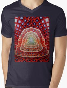 Alex Grey Colourfull 12 Mens V-Neck T-Shirt