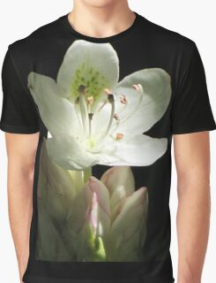 Illuminated Rhododendron Graphic T-Shirt