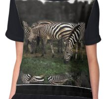 A Zeal of Zebras Poster Chiffon Top