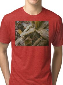 Leaves Tri-blend T-Shirt