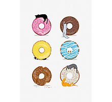 Cats and Doughnuts Photographic Print