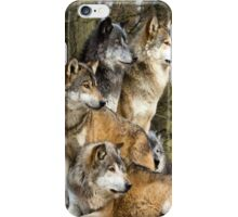Wolf Pack Phone Case/Skin iPhone Case/Skin