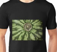 The End of the Melon Unisex T-Shirt
