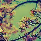 Bloomin' by Angela King-Jones