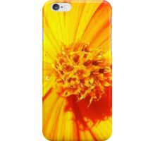 """Flowerburst"" - Unique Original Artist's Floral Photograph! iPhone Case/Skin"