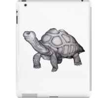 A Little Lonely iPad Case/Skin