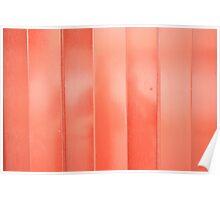 Steel Red Door Poster
