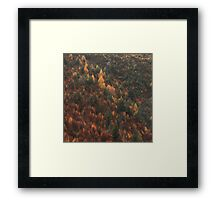 Autumn Colour in Arrowtown Framed Print