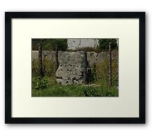 Fence in a Pasture Framed Print