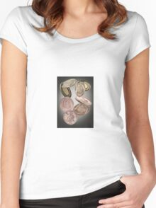 American Dollar used  by smuglers in the 1800s Women's Fitted Scoop T-Shirt