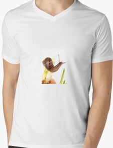 Snail walking on onion Mens V-Neck T-Shirt