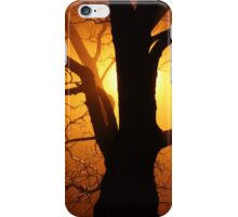 Abstract Sunset with Tree  Beautiful Nature iPhone Case/Skin