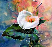 CALLA LILY by Tammera