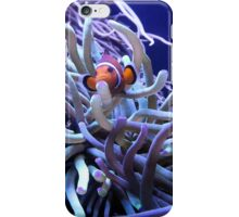 Clown Fish Anemone iPhone Case/Skin