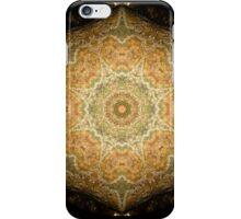Merry Meet Mandala iPhone Case/Skin