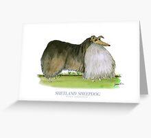 Shetland Sheepdog - tony fernandes Greeting Card