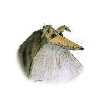 Shetland Sheepdog - tony fernandes Sticker