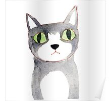 Cat with Serious Expression Poster