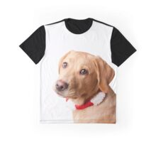 Mr Scooby Doo Graphic T-Shirt