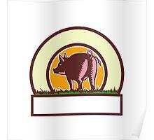 Pig Tail Rear Circle Woodcut Poster