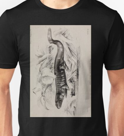 Proceedings of the Zoological Society of London 1848 - 1860 V4 Reptilia 003 Unisex T-Shirt