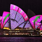 Pink & Patterned Opera House by Michael Matthews