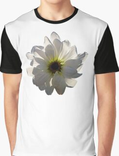 Backlit White Daisy Graphic T-Shirt