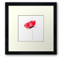 Cute beautiful abstract Poppy flower isolated on white Framed Print