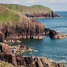 Pembrokeshire Coast Near Manorbier by Chester Tugwell