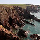Pembrokeshire Coast Near Angle by Chester Tugwell