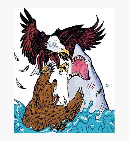 Nature Vs Nature - Bear VS Eagle Vs Shark Threesome Photographic Print