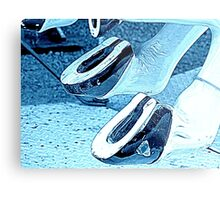 Horsey Shoes  Metal Print