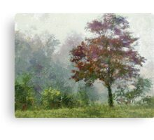 Tree In Lifting Fog Metal Print