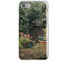 Olde World iPhone Case/Skin
