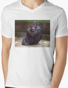 Who's Watching Who Mens V-Neck T-Shirt