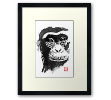 chimpanze Framed Print