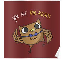 You Are Owl~Right! Owl Poster