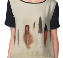 Feather Study no. 1 Chiffon Top