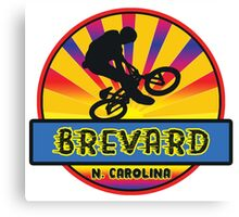 MOUNTAIN BIKE BREVARD NORTH CAROLINA BIKING MOUNTAINS Canvas Print