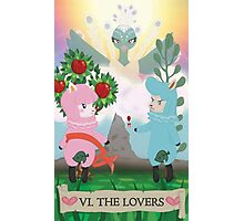 Tarot - VI The Lovers: Reese and Cyrus ACNL Photographic Print