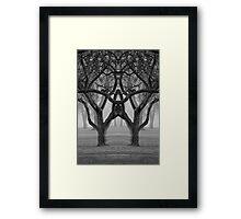 BW112 Framed Print