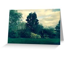 The Trees and The Sky Greeting Card