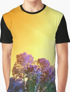 ViewsFromTheAether 17 Graphic T-Shirt