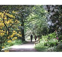 Springtime at Stourhead Photographic Print