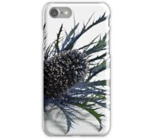 Eryngium iPhone Case/Skin