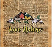 Small birds on tree branch Vintage Dictionary Art Love Nature Photographic Print