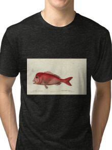 Natural History Fish Histoire naturelle des poissons Georges V1 V2 Cuvier 1849 101 Tri-blend T-Shirt