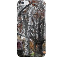 Along the Stone Wall iPhone Case/Skin