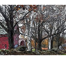 Along the Stone Wall Photographic Print