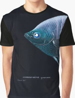 Natural History Fish Histoire naturelle des poissons Georges V1 V2 Cuvier 1849 047 Inverted Graphic T-Shirt